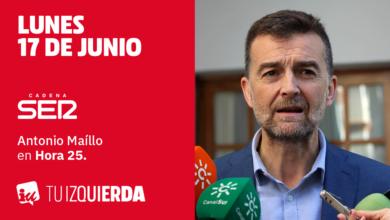 Photo of Antonio Maíllo: «Se ha profesionalizado la política y eso pervierte su condición de servicio público»