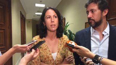 Photo of El Gobierno responde a Eva García Sempere que 'no es posible crear una Agencia específica del aceite de oliva' a nivel estatal para hacer frente a la grave situación del sector