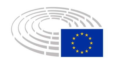 Photo of Statement on behalf of MEP Manu Pineda, Chair of the European Parliament Delegation for Relations with Palestine