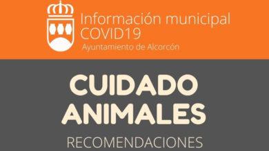 Photo of Campaña de recomendaciones sobre el cuidado de los animales domésticos – Ayuntamiento de Alcorcón